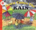 Down Comes the Rain cover