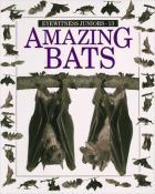 Amazing Bats cover