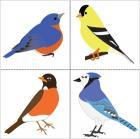 Bluebird, goldfinch, robin, and blue jay