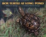 Box Turtle at Long Pond cover