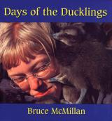Days of the Ducklings cover