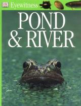 Pond & River cover