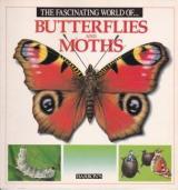 Butterflies and Moths cover