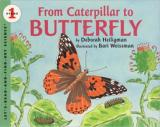 From Caterpillar to Butterfly cover