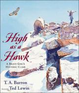 High as a Hawk cover