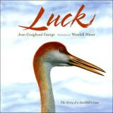 Luck: The Story of a Sandhill Crane cover