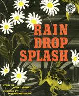 Rain Drop Splash cover