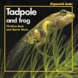 Tadpole and Frog cover
