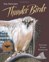 Thunder Birds cover
