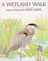 A Wetland Walk cover