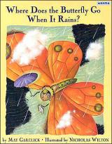 Where Does the Butterfly Go When it Rains cover