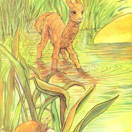 Little llama wading in a green pond with a smiling turtle looking on