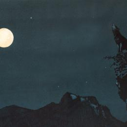 A lone wolf howling at the moon from a rocky cliff