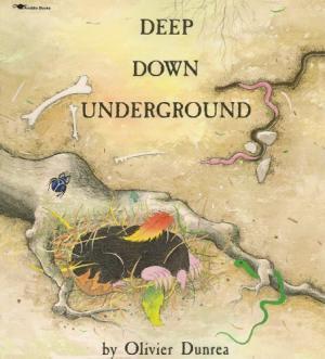 Deep Down Underground cover