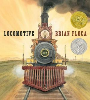 Locomotive cover