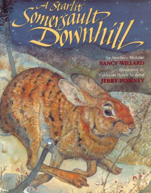 Starlit Somersault Downhill cover