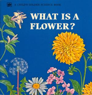 What is a Flower? cover
