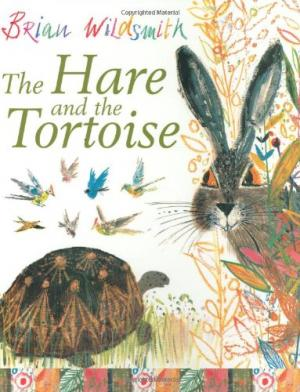 cover-rabbit and turtle looking at each other